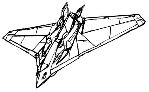 tsybam_flight.jpg